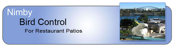 Bird Control_for_Restaurant_Patios_Header