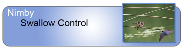 Swallow Control_Header