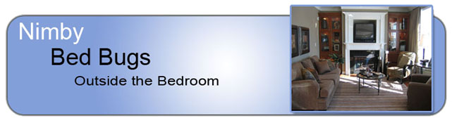 bed-bugs-outside-the-bedroom-header